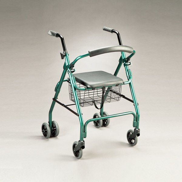 Cruiser Walker Teal